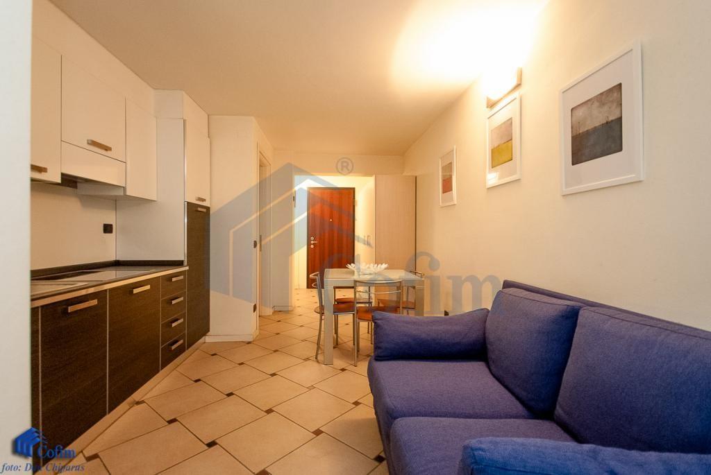 Monolocale elegantemente arredato in Residenza Longhignana, adiacenza    San Felice (Segrate) - in Affitto - 2