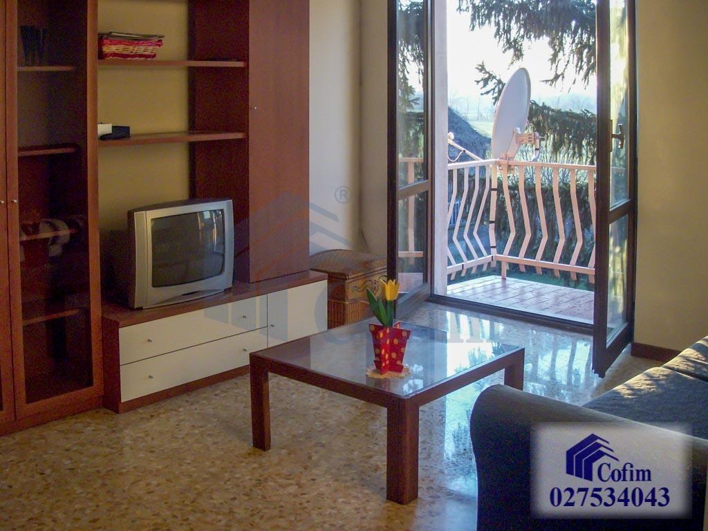 Monolocale con balcone  Pioltello (Pioltello) Affitto in Esclusiva - 1