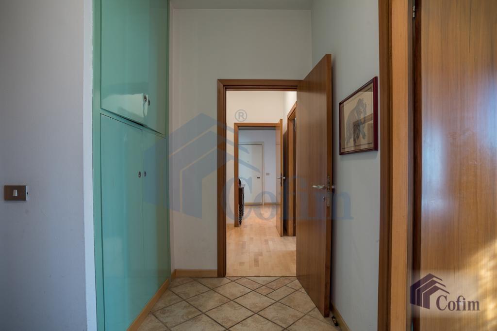 Quadrilocale ultimo piano  San Felice (Segrate) - in Vendita - 15