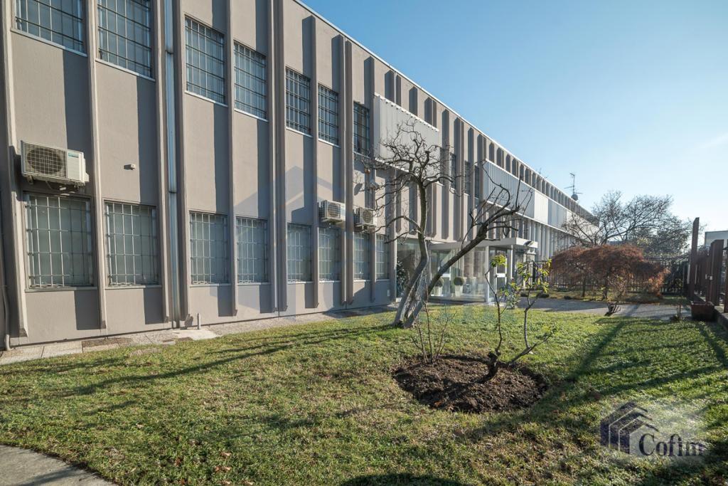 Ufficio completamente ristrutturato  San Donato Milanese (San Donato Milanese) - in Affitto - 24
