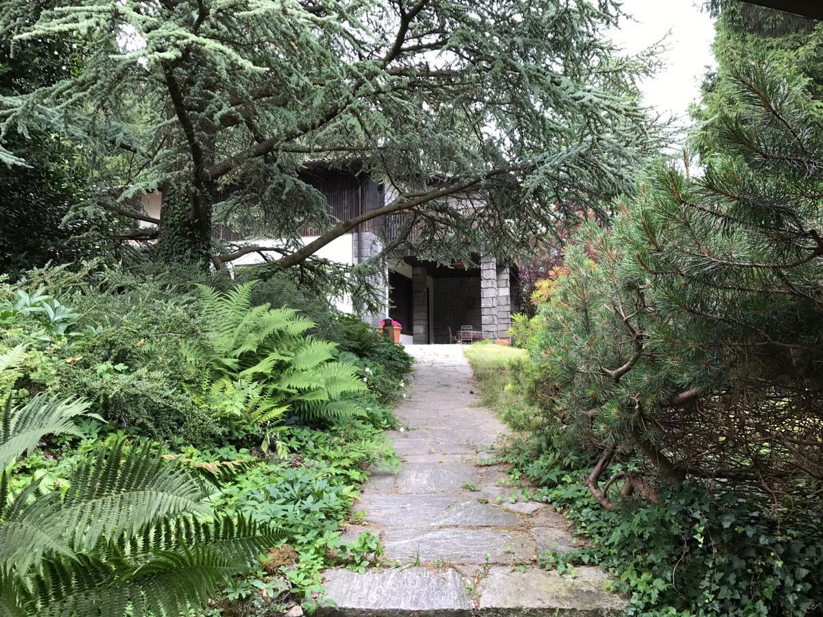 Villa bifamiliare immersa in un parco di abeti secolari Selvino - in Vendita - 6