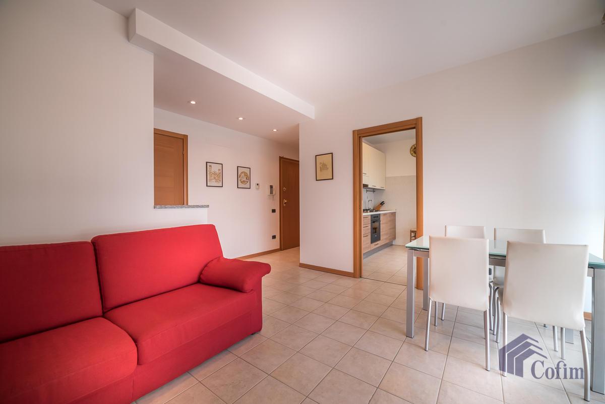 Bilocale ampio  Milano (Milano Rogoredo) Affitto in Esclusiva - 2