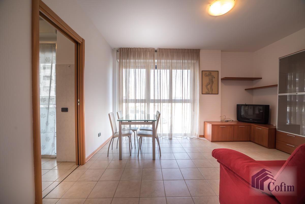 Bilocale ampio  Milano (Milano Rogoredo) Affitto in Esclusiva - 5