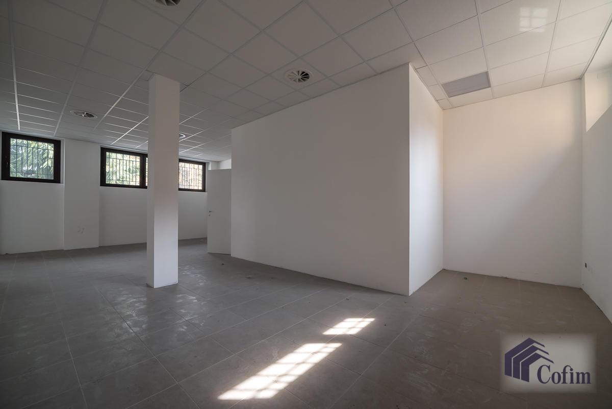 Negozio spazioso  Zelo Foramagno (Peschiera Borromeo) - in Affitto - 9