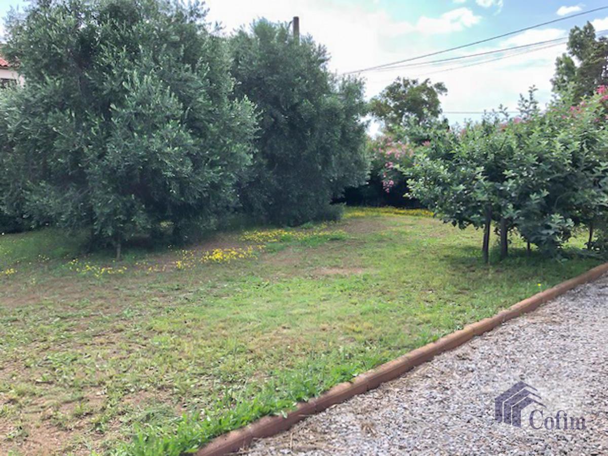 Villa singola con terreno edificabile in Corsica a Macinaggio - Bastia  - in Vendita - 5