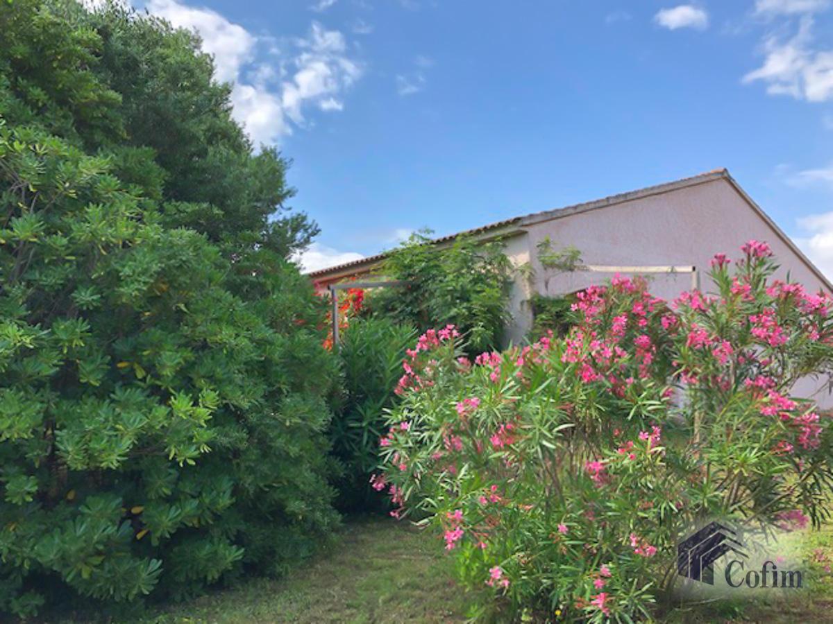 Villa singola con terreno edificabile in Corsica a Macinaggio - Bastia  - in Vendita - 10