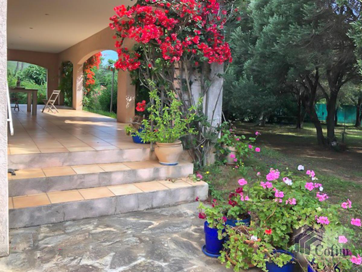 Villa singola con terreno edificabile in Corsica a Macinaggio - Bastia  - in Vendita - 14