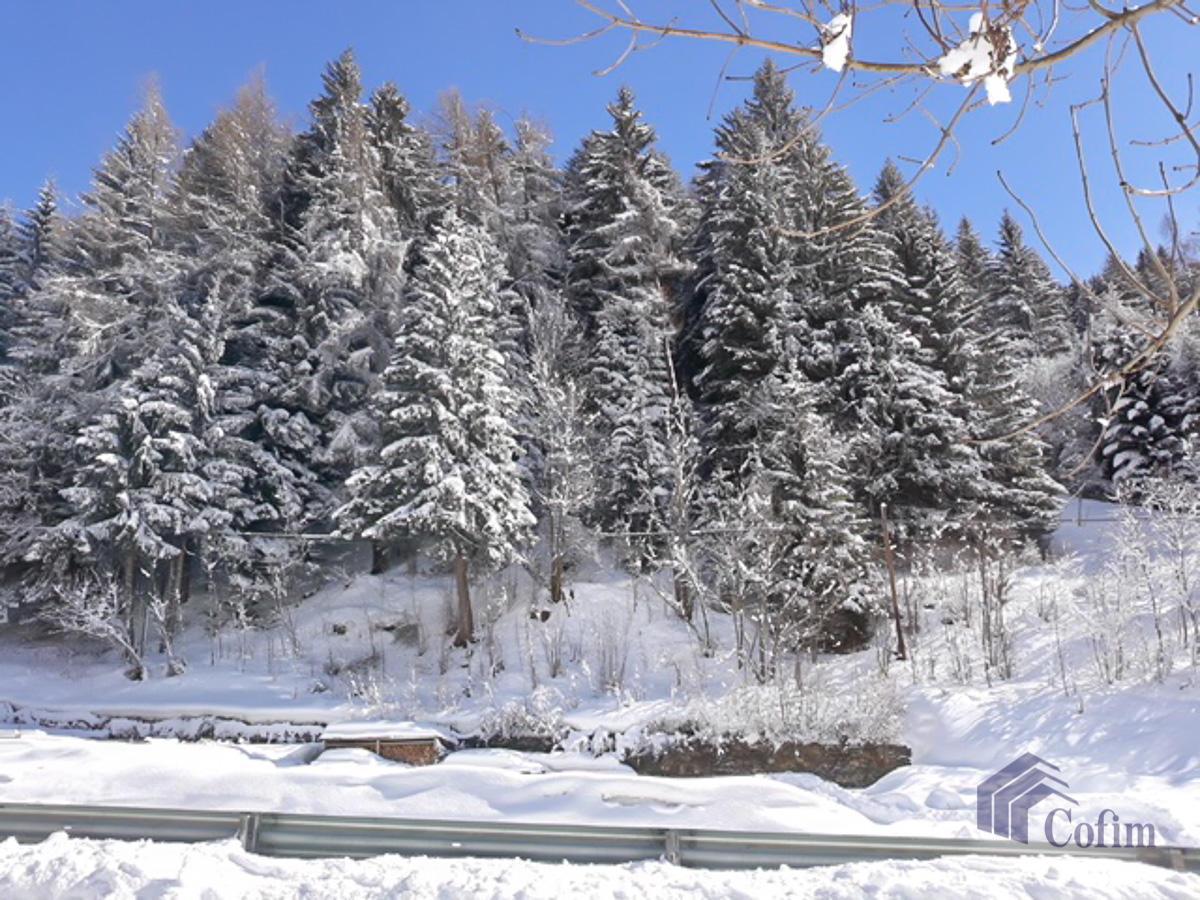 Bilocale ULTIME TIPOLOGIE  Precasaglio (Ponte di Legno) in Vendita - 25