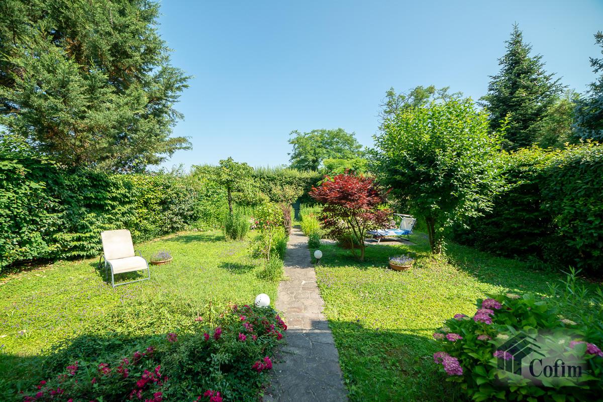 Appartamento di pregio su due livelli con giardino  Residenza Longhignana (Peschiera Borromeo) - in Vendita - 20