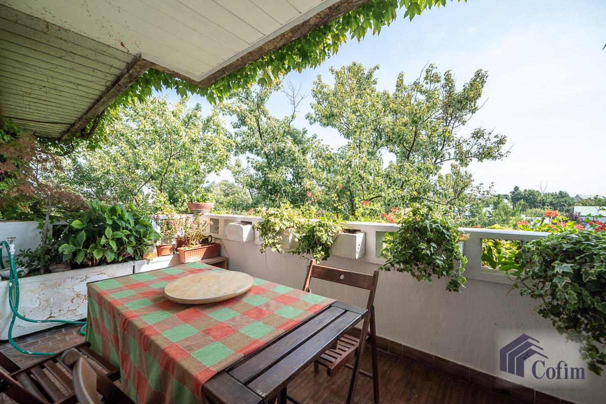 5 Locali ampio, piano alto, posto in Settima Strada  San Felice (Segrate) - in Affitto - 3