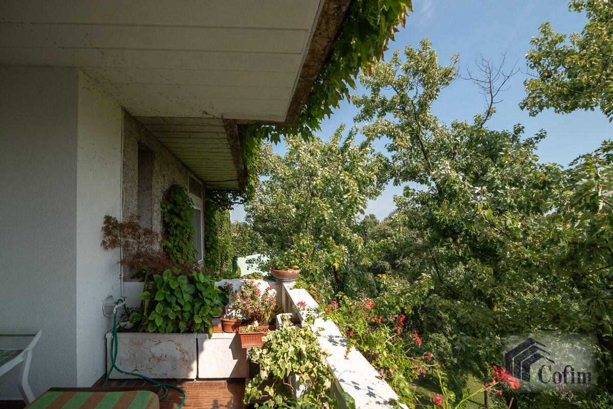 5 Locali ampio, piano alto, posto in Settima Strada  San Felice (Segrate) - in Affitto - 4