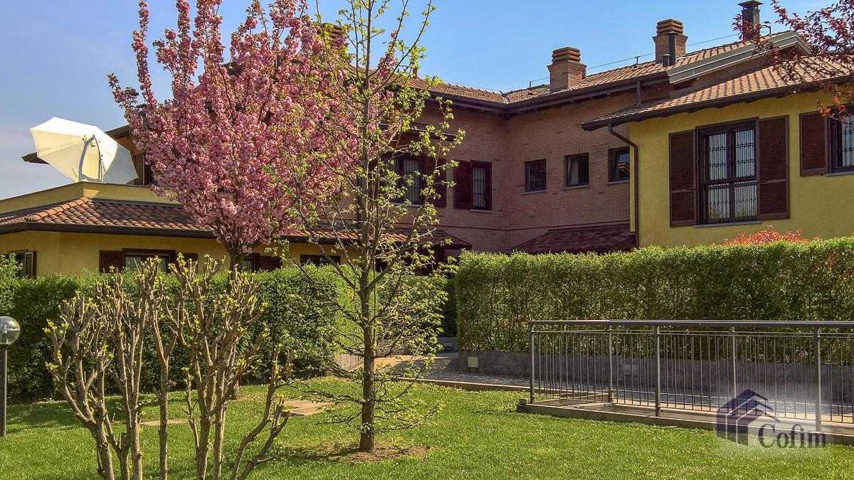 5 Locali luminoso su due piani  Millepini (Rodano) - in Affitto - 2