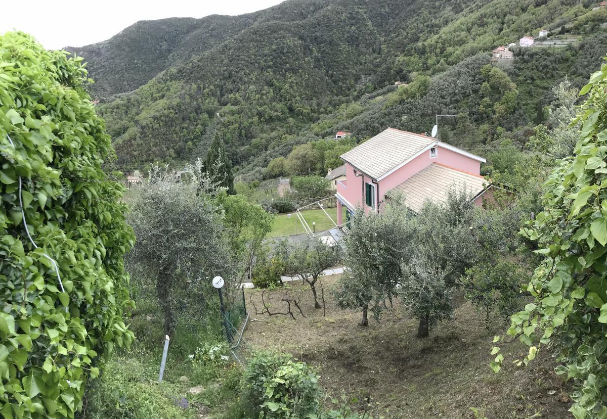 Villa singola Moneglia in Vendita - 24