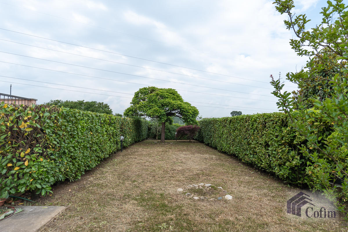 Trilocale con taverna e giardino privato  Bettolino (Mediglia) - in Vendita - 8