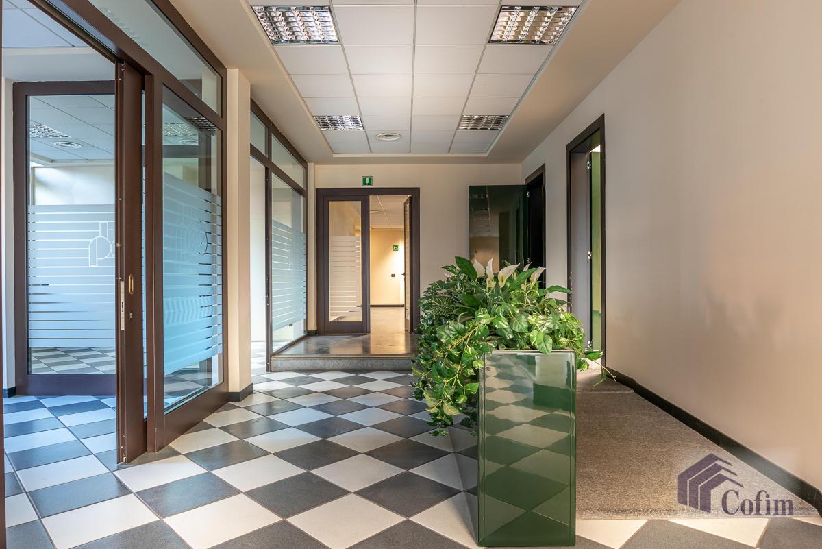 Ufficio in zona centralissima  Segrate (Segrate) Affitto in Esclusiva - 1