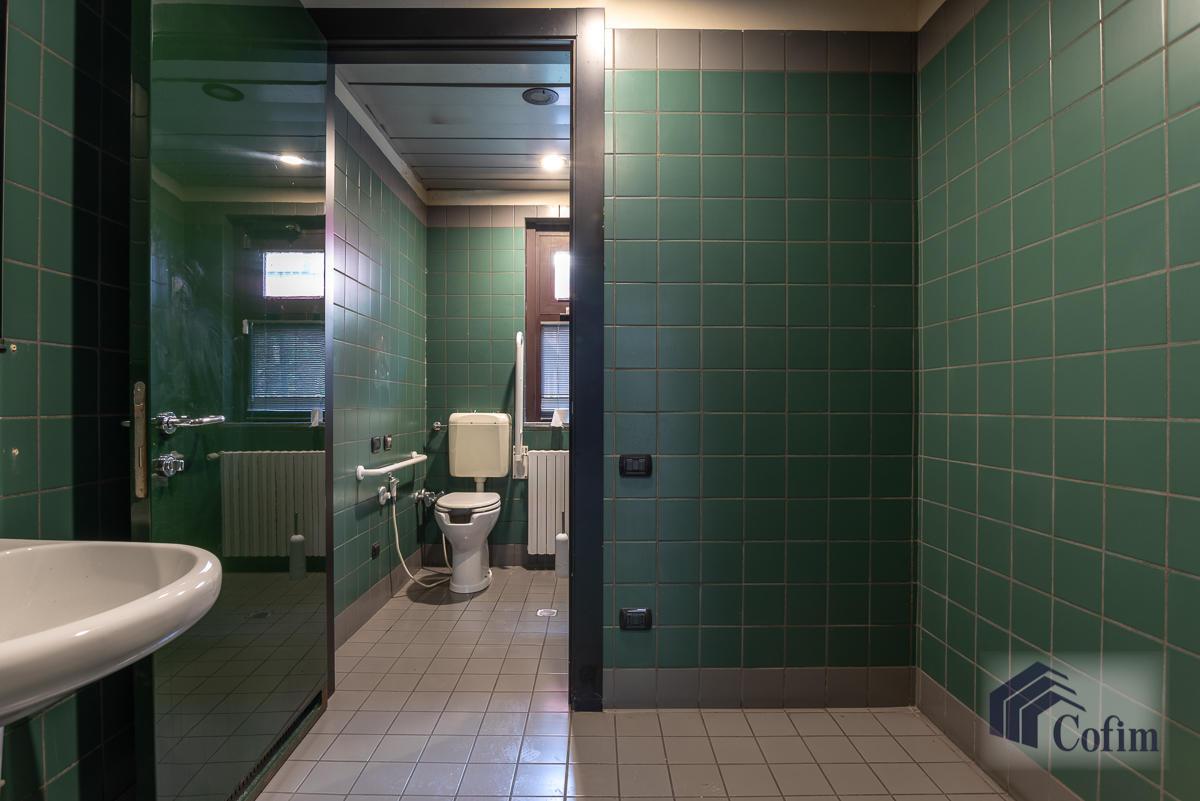 Ufficio in zona centralissima  Segrate (Segrate) Affitto in Esclusiva - 24