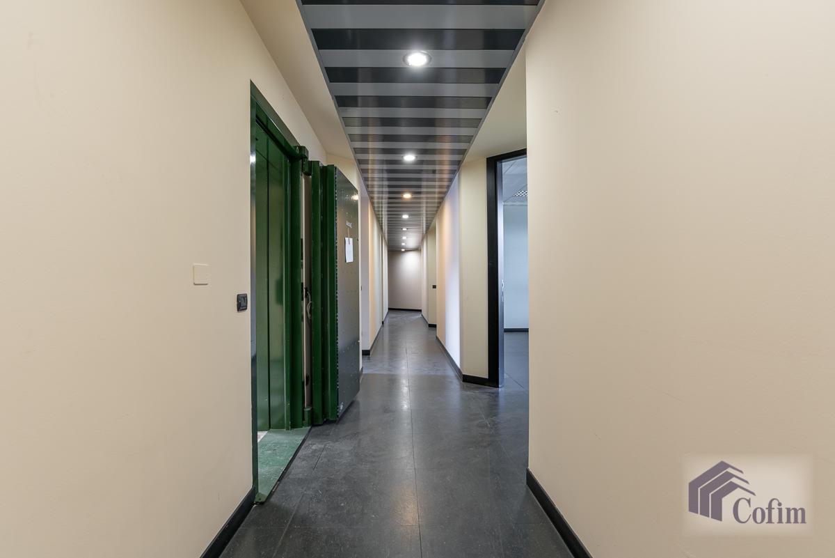Ufficio in zona centralissima  Segrate (Segrate) Affitto in Esclusiva - 14