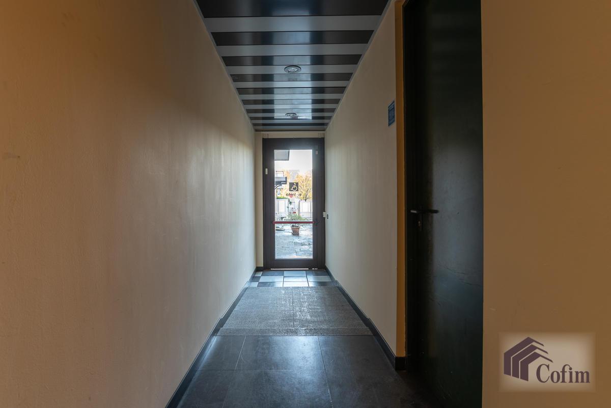 Ufficio in zona centralissima  Segrate (Segrate) Affitto in Esclusiva - 13