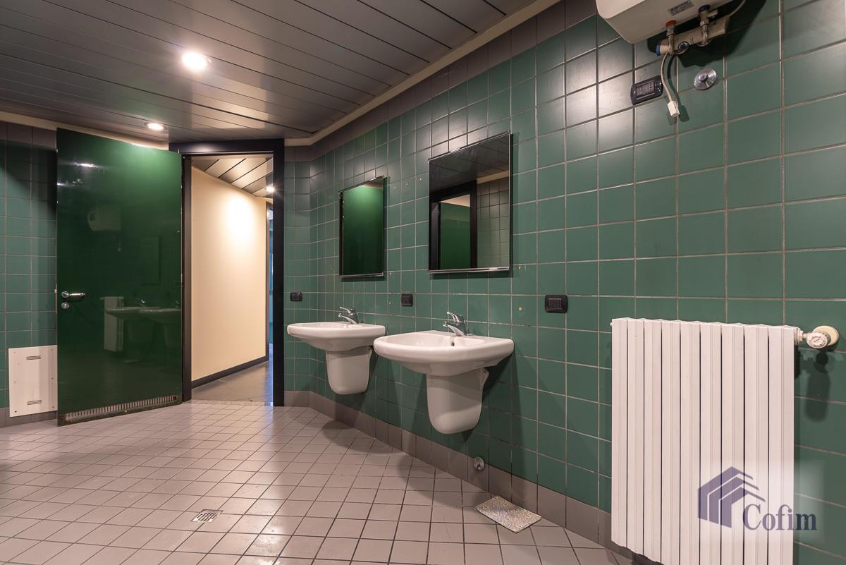 Ufficio in zona centralissima  Segrate (Segrate) Affitto in Esclusiva - 22