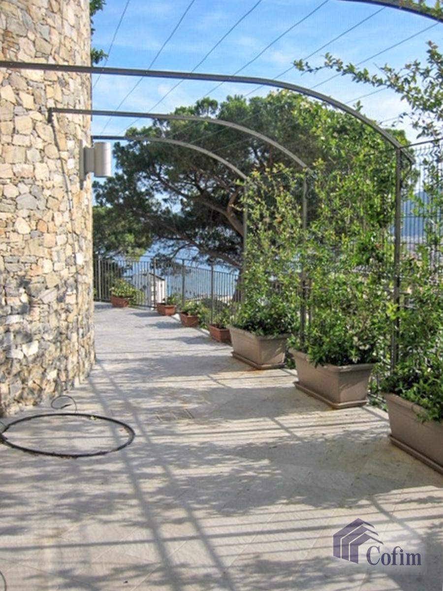 Quadrilocale con giardino privato  Alassio in Vendita - 7
