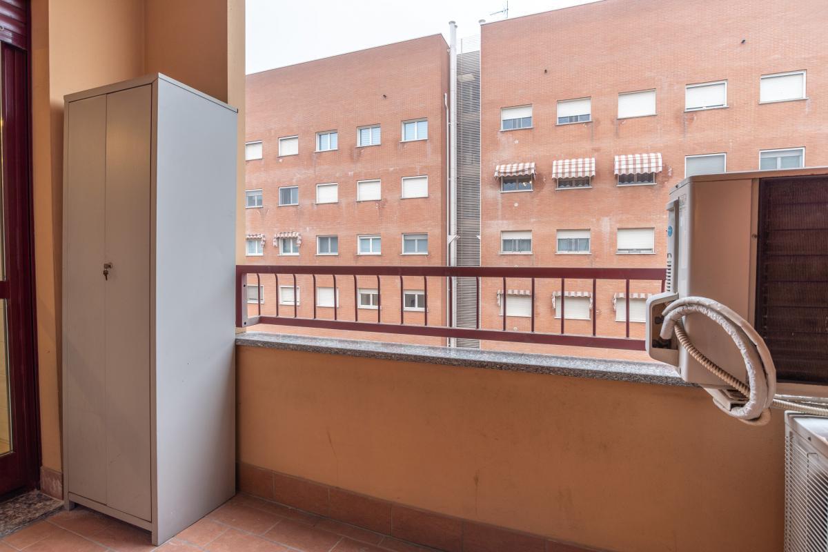 Trilocale elegante  Pioltello (Pioltello) Affitto in Esclusiva - 5