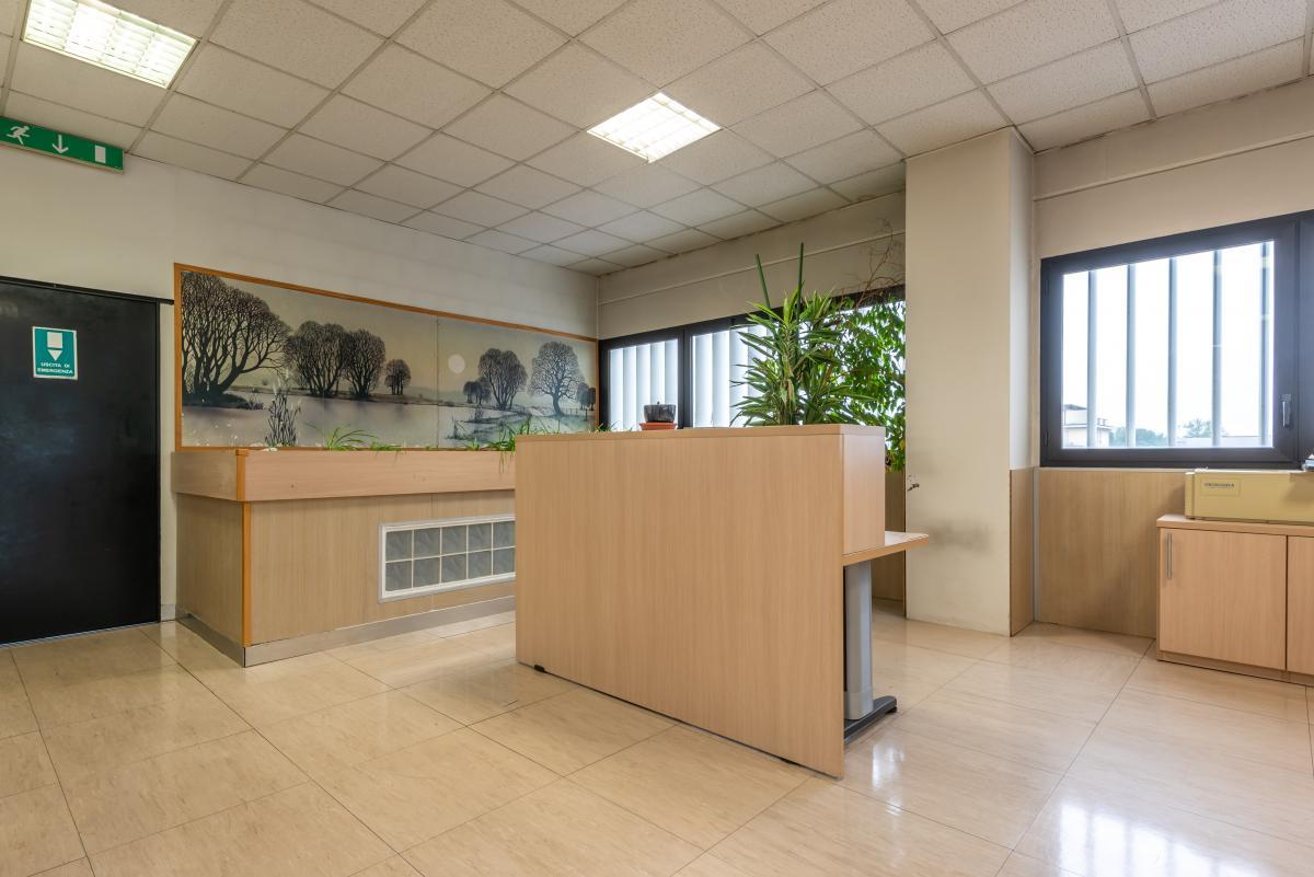 Ufficio luminoso e ampio  Segrate (Segrate) Affitto in Esclusiva - 1