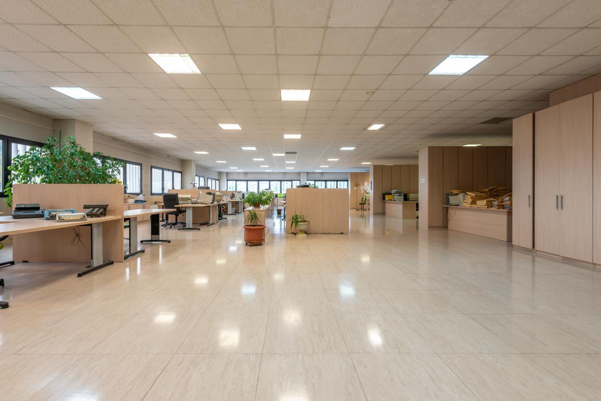 Ufficio luminoso e ampio  Segrate (Segrate) Vendita in Esclusiva - 3