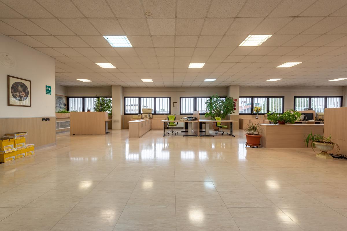 Ufficio luminoso e ampio  Segrate (Segrate) Affitto in Esclusiva - 5