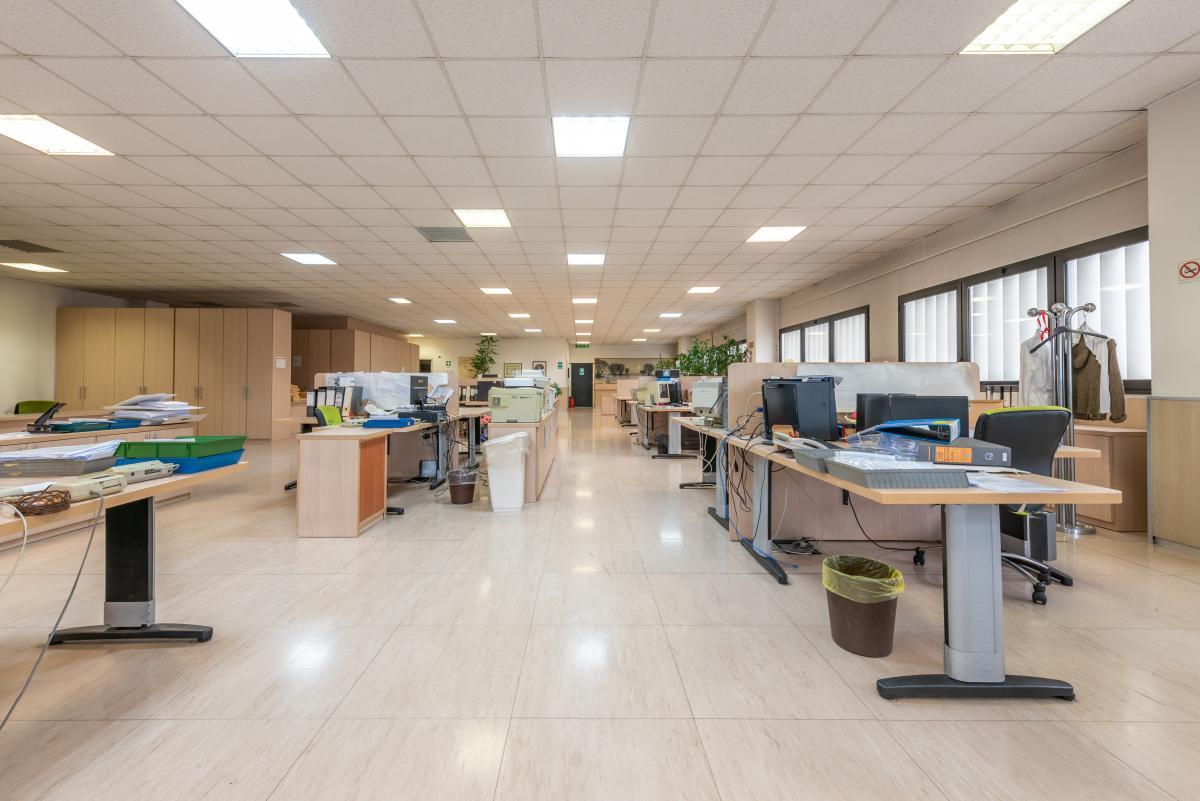 Ufficio luminoso e ampio  Segrate (Segrate) Affitto in Esclusiva - 10