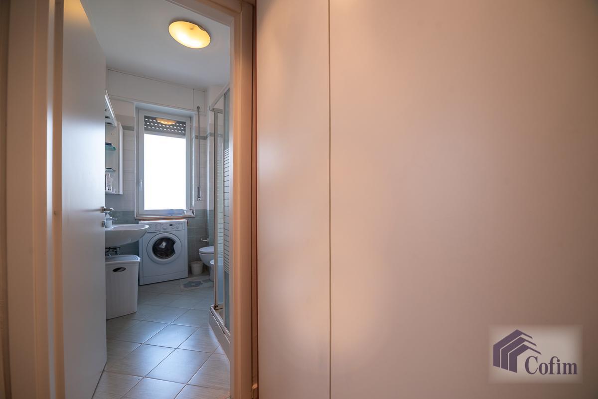Villa singola suddivisa in 4 appartamenti  Canzo (Peschiera Borromeo) Vendita in Esclusiva - 35