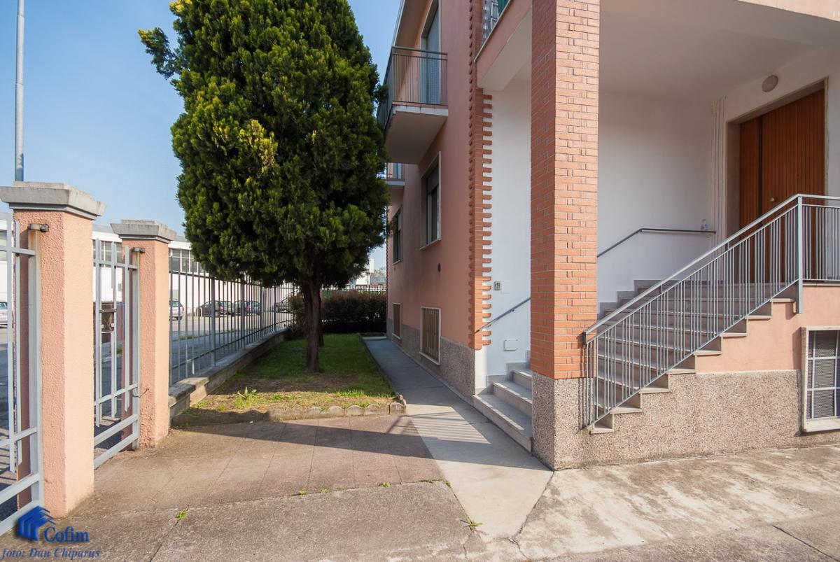Villa singola suddivisa in 4 appartamenti  Canzo (Peschiera Borromeo) Vendita in Esclusiva - 2