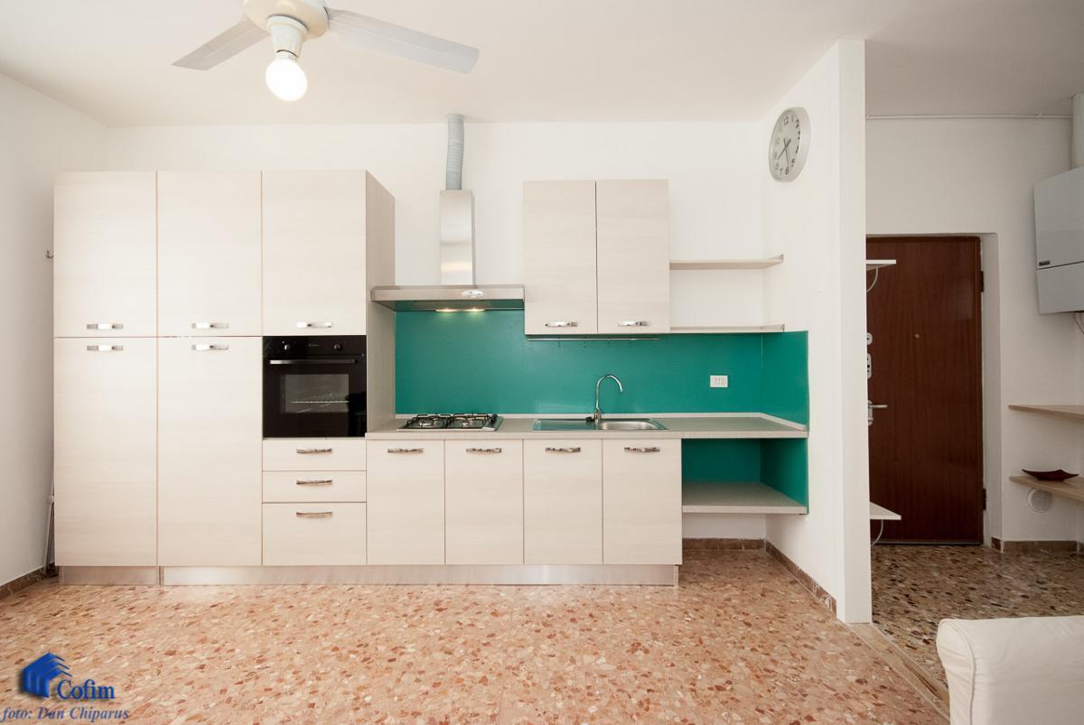 Villa singola suddivisa in 4 appartamenti  Canzo (Peschiera Borromeo) Vendita in Esclusiva - 12