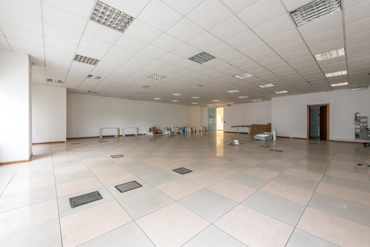 Capannone + Uffici ristrutturati  Segrate (Segrate) Affitto in Esclusiva - 7