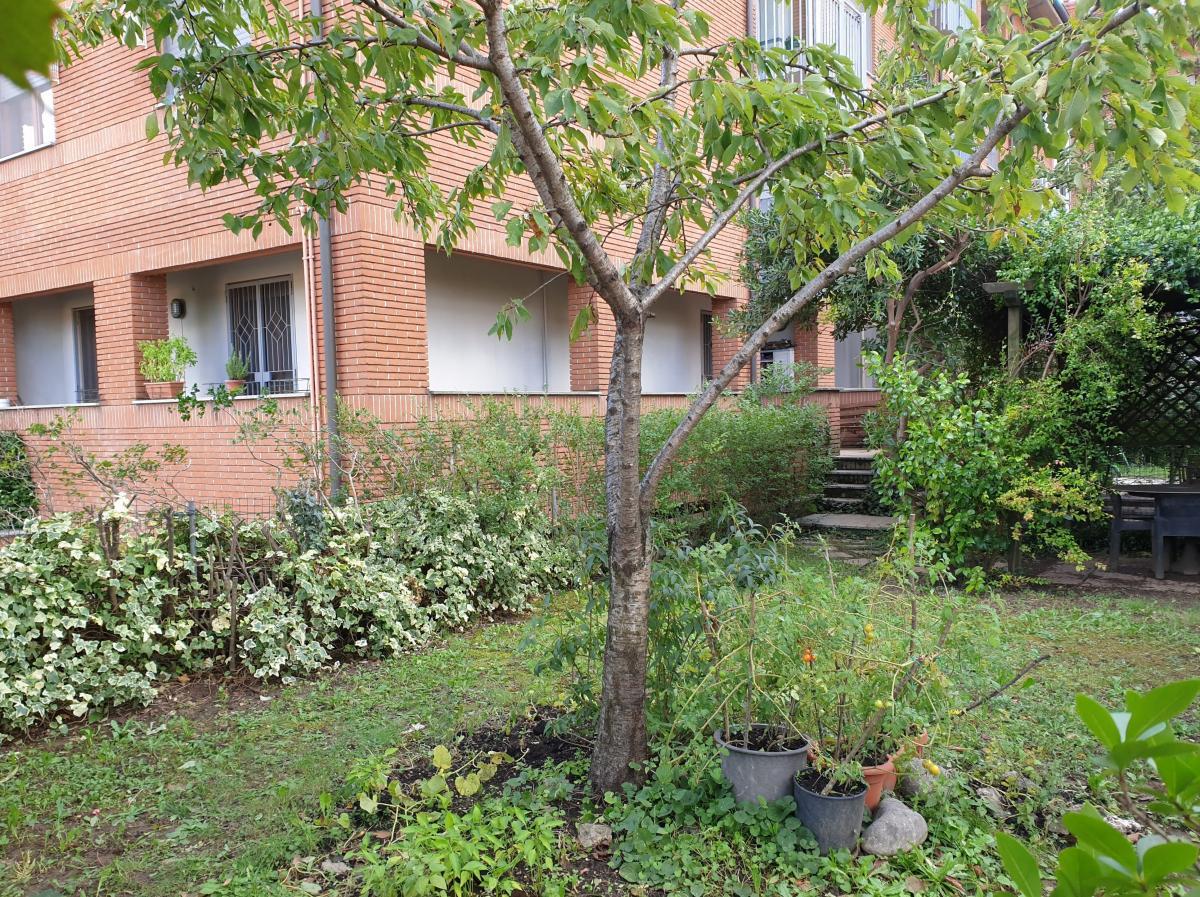 Bilocale con ampio giardino  Mezzate (Peschiera Borromeo) Affitto in Esclusiva - 16