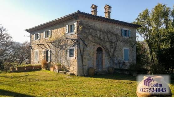 Villa singola Todi MD6033