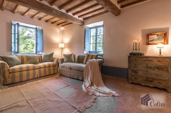 Villa singola Todi MD4951